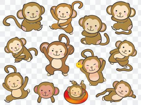 Monkey 08