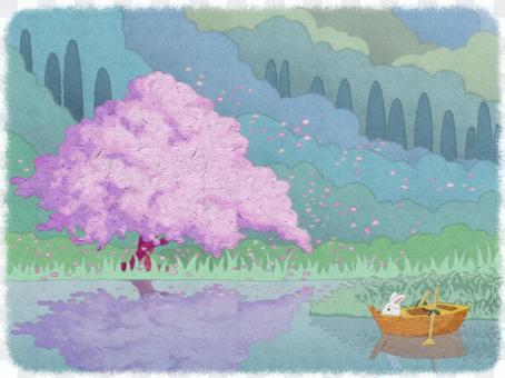 湖畔櫻花和兔子