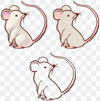 鼠標與線條圖設置