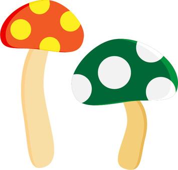 Mushroom 05 Orange and Yellow Green and White