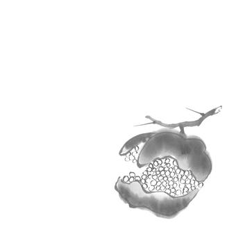 수묵화 일본의 사계 가을의 미각 석류