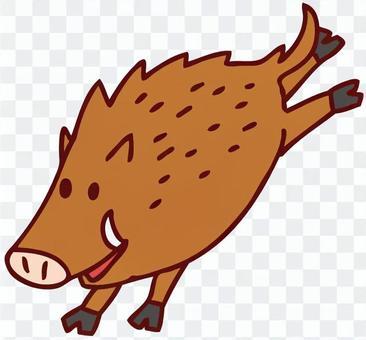 野豬的插圖