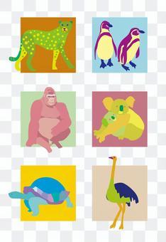 animal_ animal