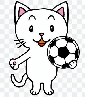 Shiroeneko-kun - football
