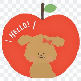 りんごトイプードル赤色リボン