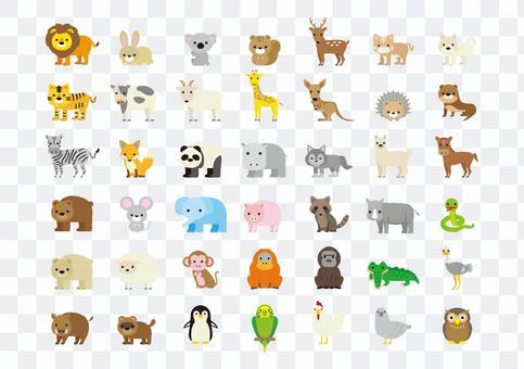 動物插圖集1