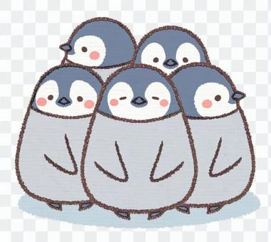 Gathered Penguin Hinna Collection