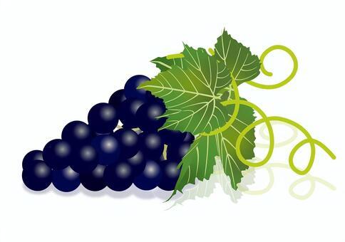 美味的葡萄10