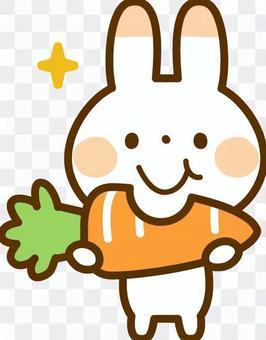 咬一根胡蘿蔔的兔子