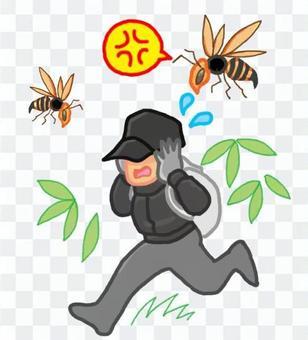 꿀벌의 위험