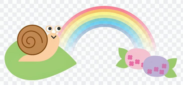 蝸牛和繡球花和彩虹