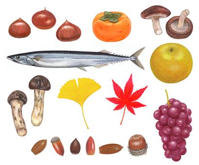 Autumn illustration set
