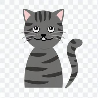 Cat's upper body