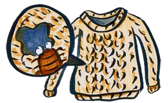 벌레 스웨터