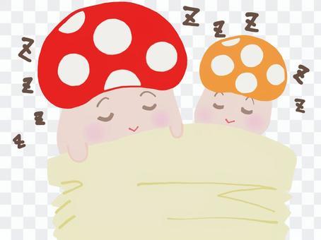 蘑菇兄弟,午睡zzz