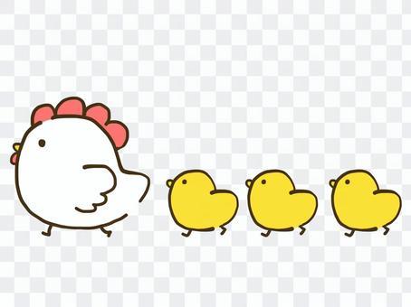 【雞年】雞雞【新年賀卡/新年】