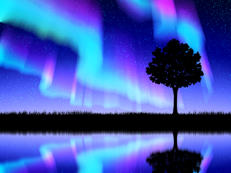 Aurora, trees and meadow silhouette