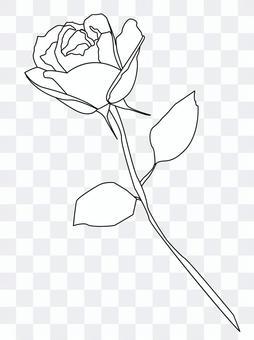 Rose one monochrome