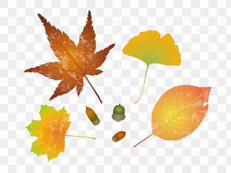 가을 잎 9