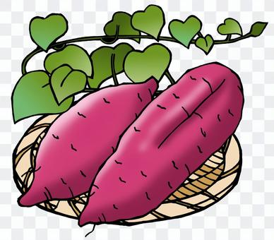 紅薯(1)