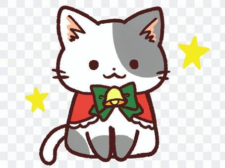 貓聖誕節服裝