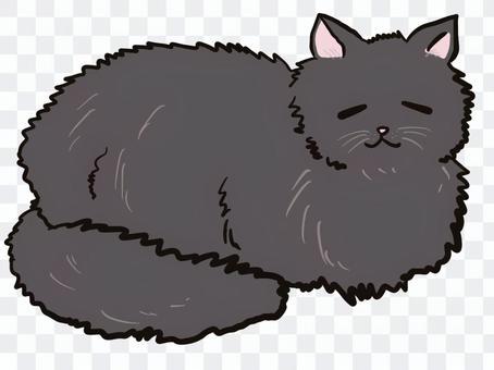 Black cat Easy and Ohirune Nap