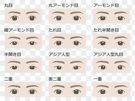 眼型/公版