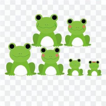 青蛙的大家庭
