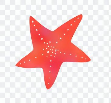 Starfish (2)