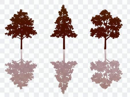 晚上樹剪影