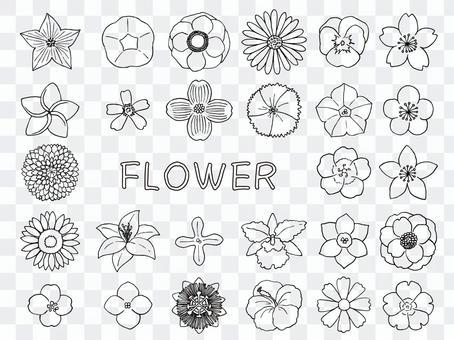 Flower illustration (line drawing)