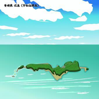 佐島 宇和海諸島 愛媛県 島 海 上空