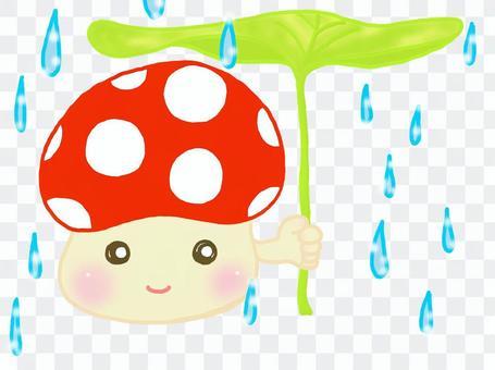 梅雨だね、キノコくん