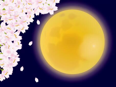 月亮和樱桃树