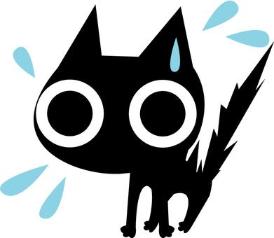一隻恐慌的貓