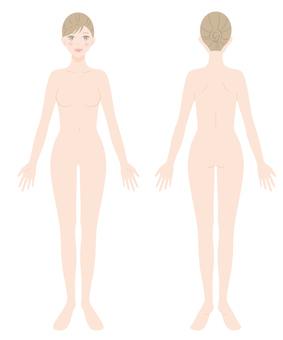 女性裸體全身正面和背面