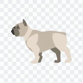 狗 - 帕格