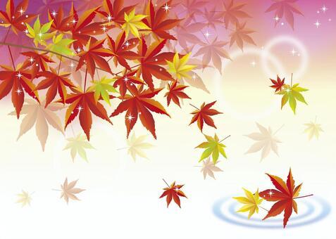 閃閃發光的秋葉圖像