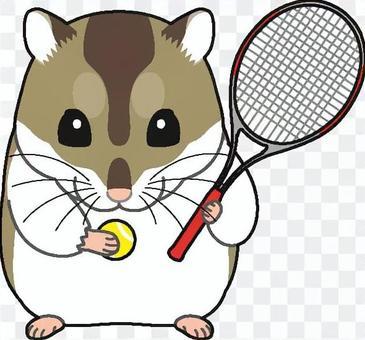 Djangarian倉鼠網球