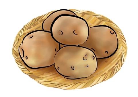 籃子裡有土的土豆