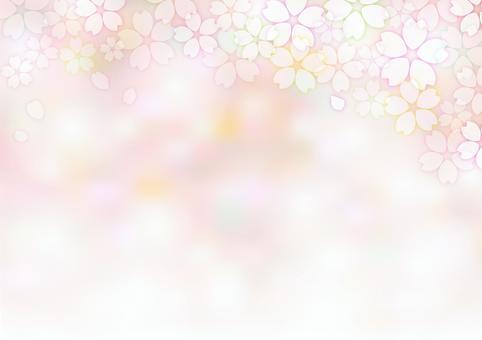 櫻花414