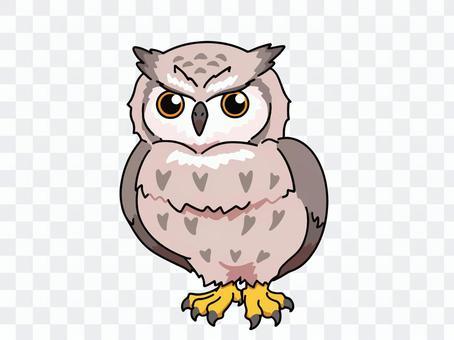 一頭簡單的貓頭鷹的插圖