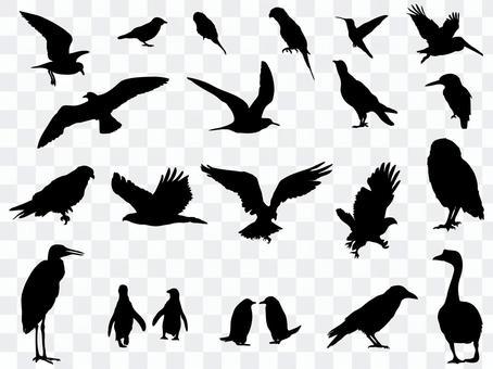 Bird silhouette_set 2