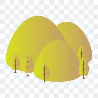 黃色的樹葉與森林