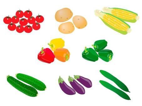 夏季蔬菜套裝的插圖