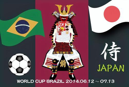 2014年巴西日本世界杯支持