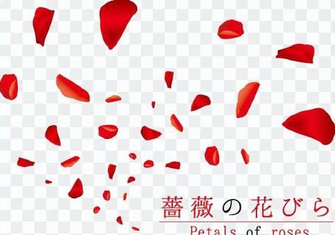 玫瑰花瓣舞1