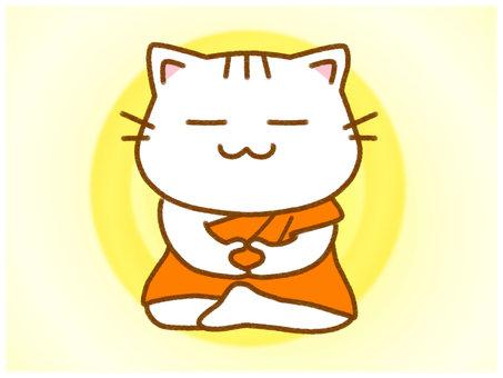 瞑想3 Monk White Cat