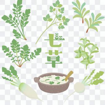春天七草藥集