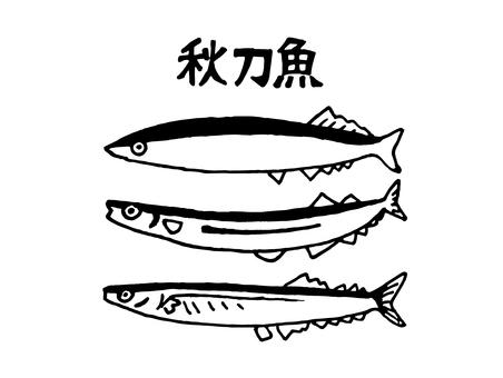Illustration of saury